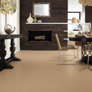 Shop Home and Commercial Styles